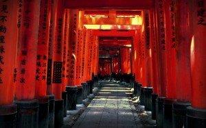 fushimi_inari_by_david_plus_1-d5vwgh9